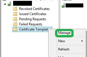 How to publish a certificate template lukes it blog how to enable approval for a certificate template yadclub Image collections